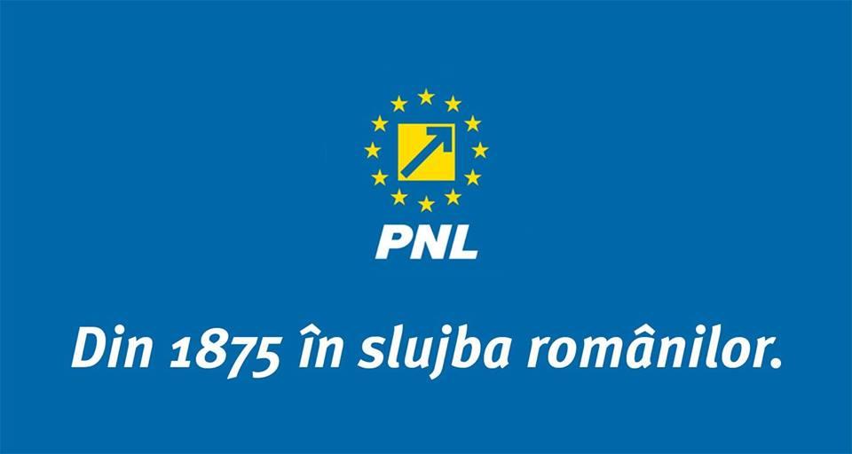Editorial: Cum a guvernat PNL? Ii mai votam?